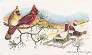 Christmas Cardinals and Farmhouse Illustration