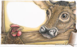 Hen and Cow Illustration